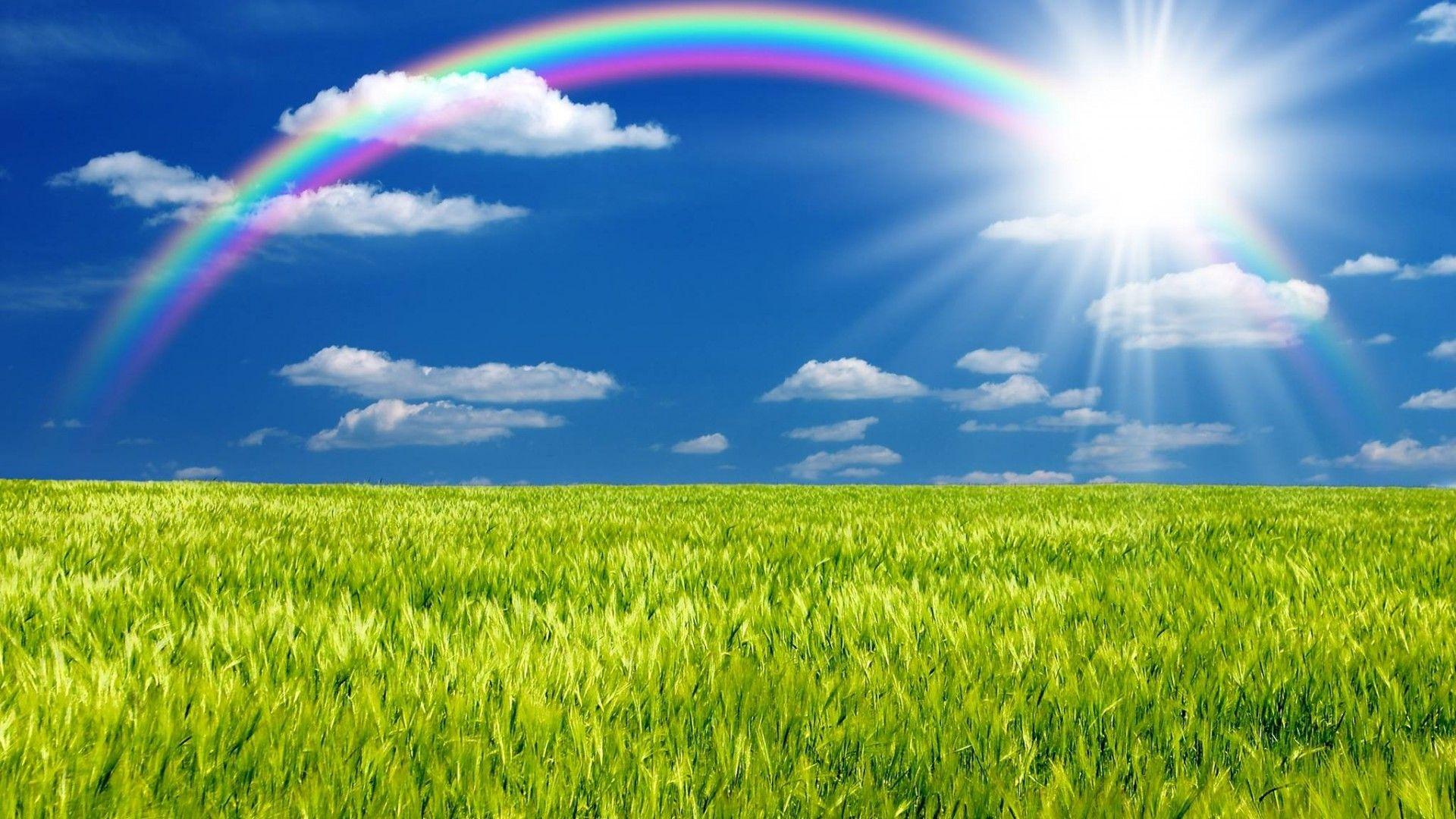 rainbows-rainbow-blue-green-grass-sky-sun-clouds-images-1920x1080.jpg (1920×1080)