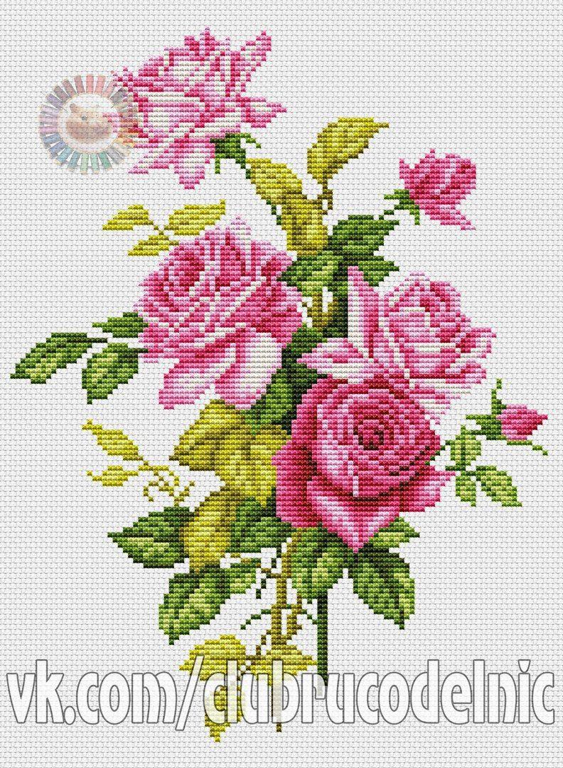 Community Wall Photos 37 480 Photos Vk Cross Stitch Rose Cross Stitch Flowers Cross Stitch Patterns Flowers