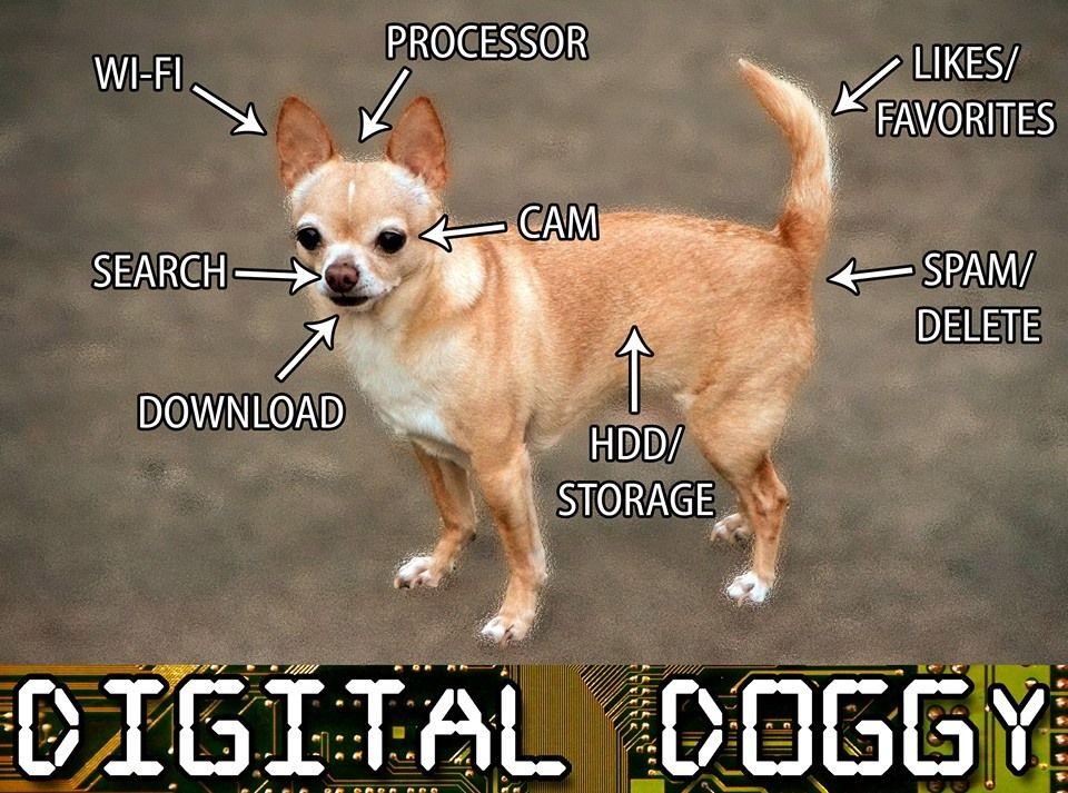 Digital Dog...  (960×713)