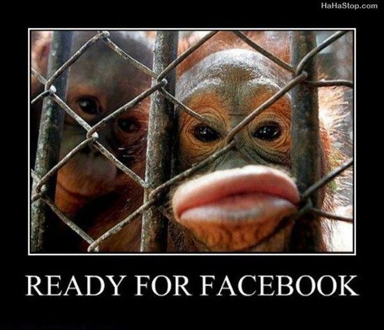 Funny Caption Picture Monkey Duck Lips Ready For Facebook