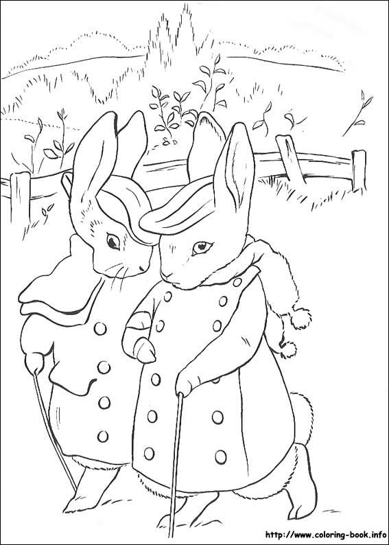 Peter Rabbit coloring picture  Coloring pages and freebies