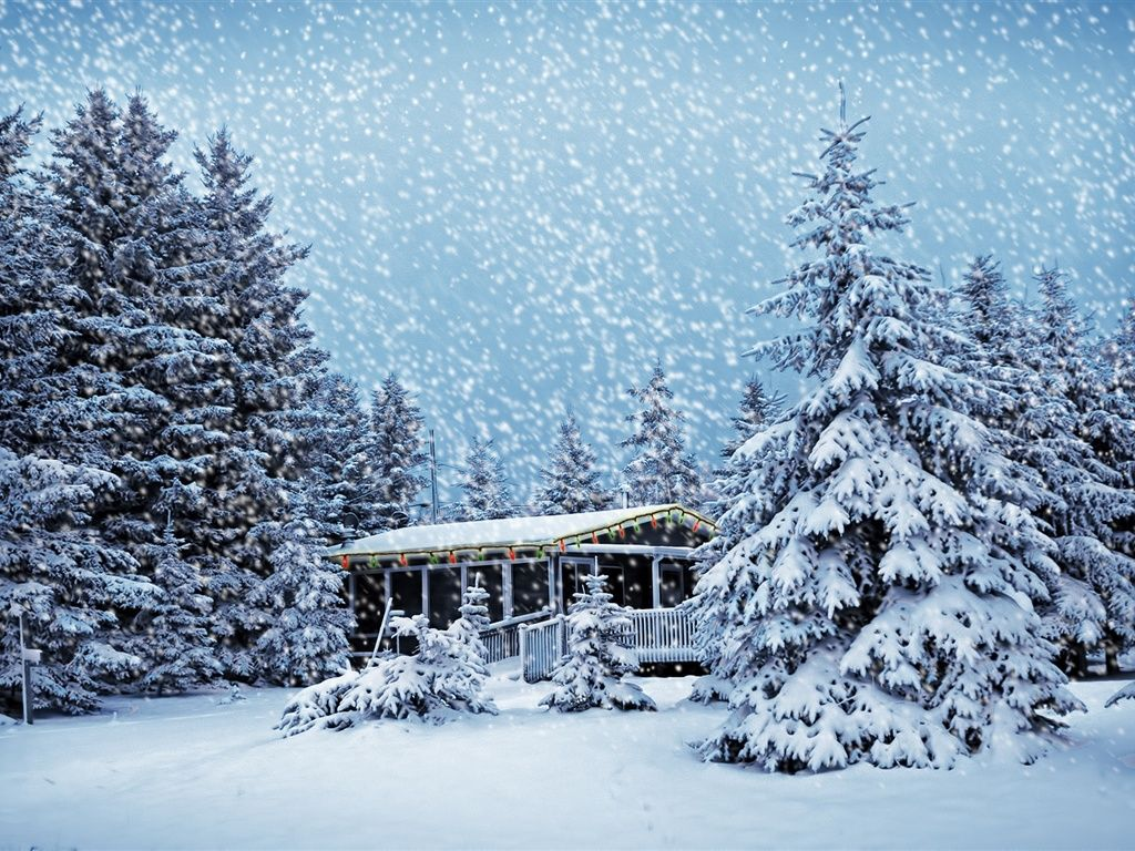 House in the winter forest hd wallpapers craft