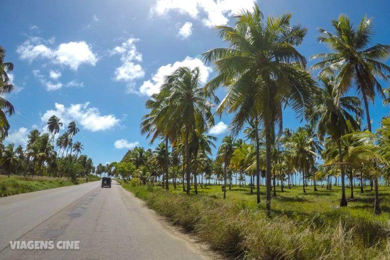Roteiro Alagoas fonte: i.pinimg.com