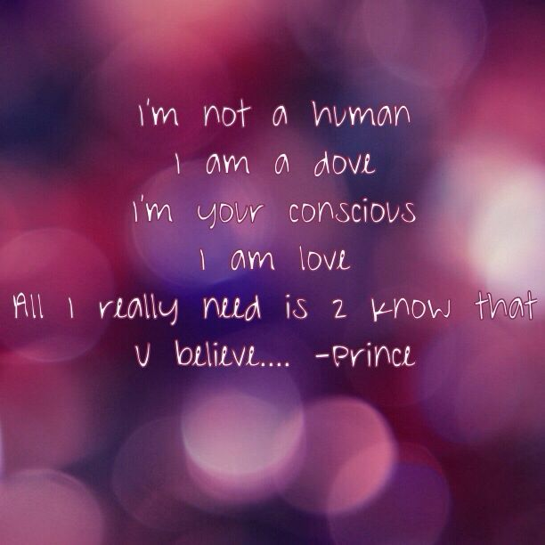 Prince i will die for you lyrics