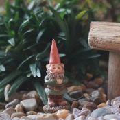 Hagar, Miniature Garden Gnome