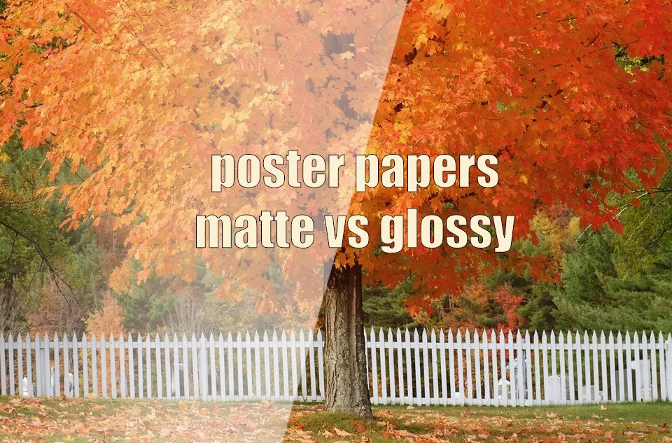 List Of Cheapest Place To Print Posters Online Poster Prints Online Posters Cheap Poster Prints