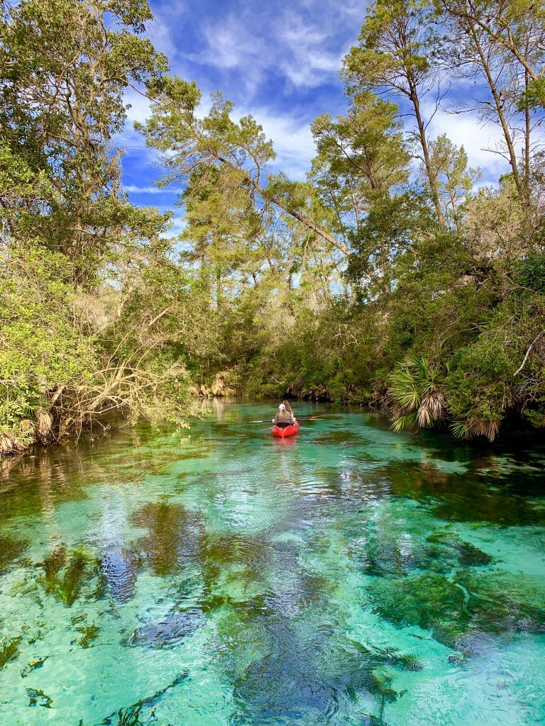 Kayaking At Weeki Wachee Springs