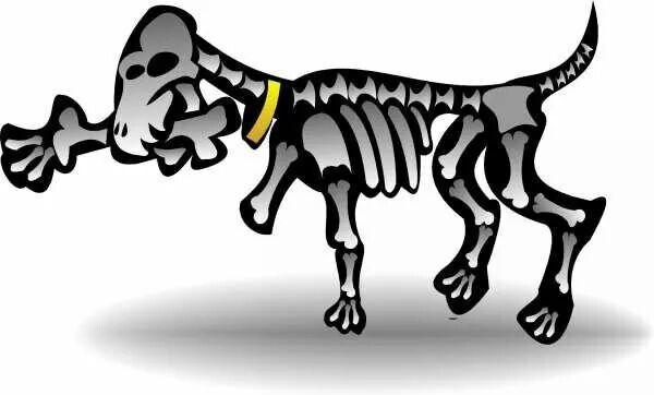 Hambre canina