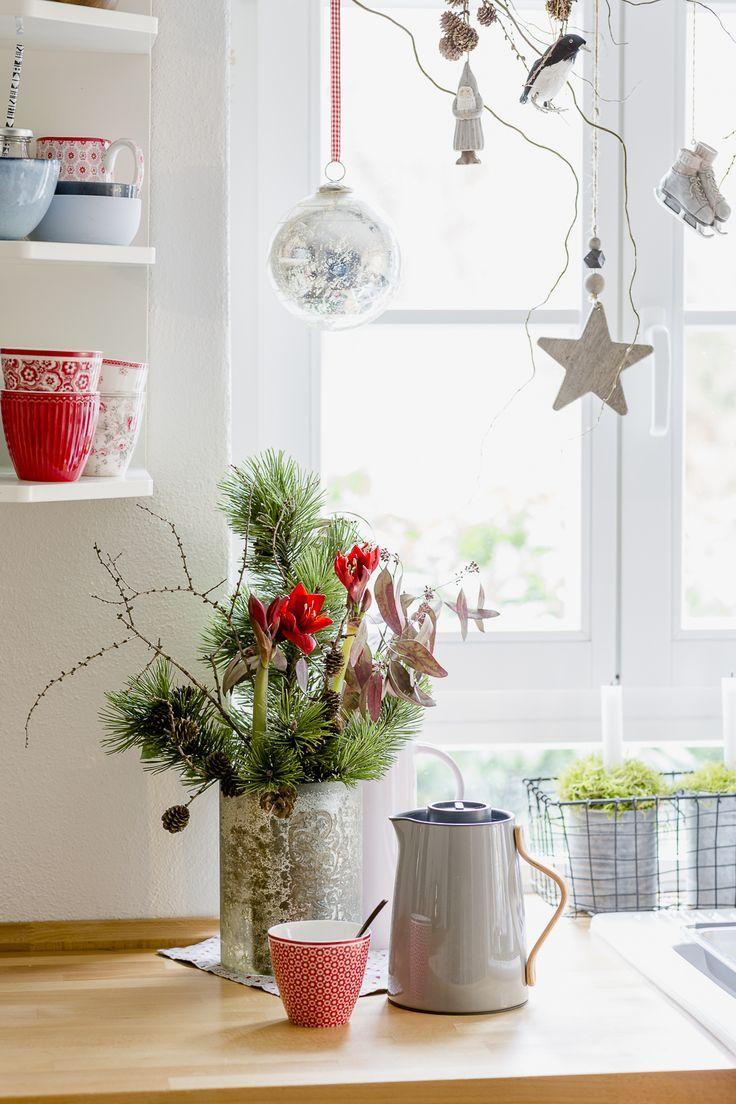 Kleine Amaryllis für die Weihnachtsdeko in der Küche
