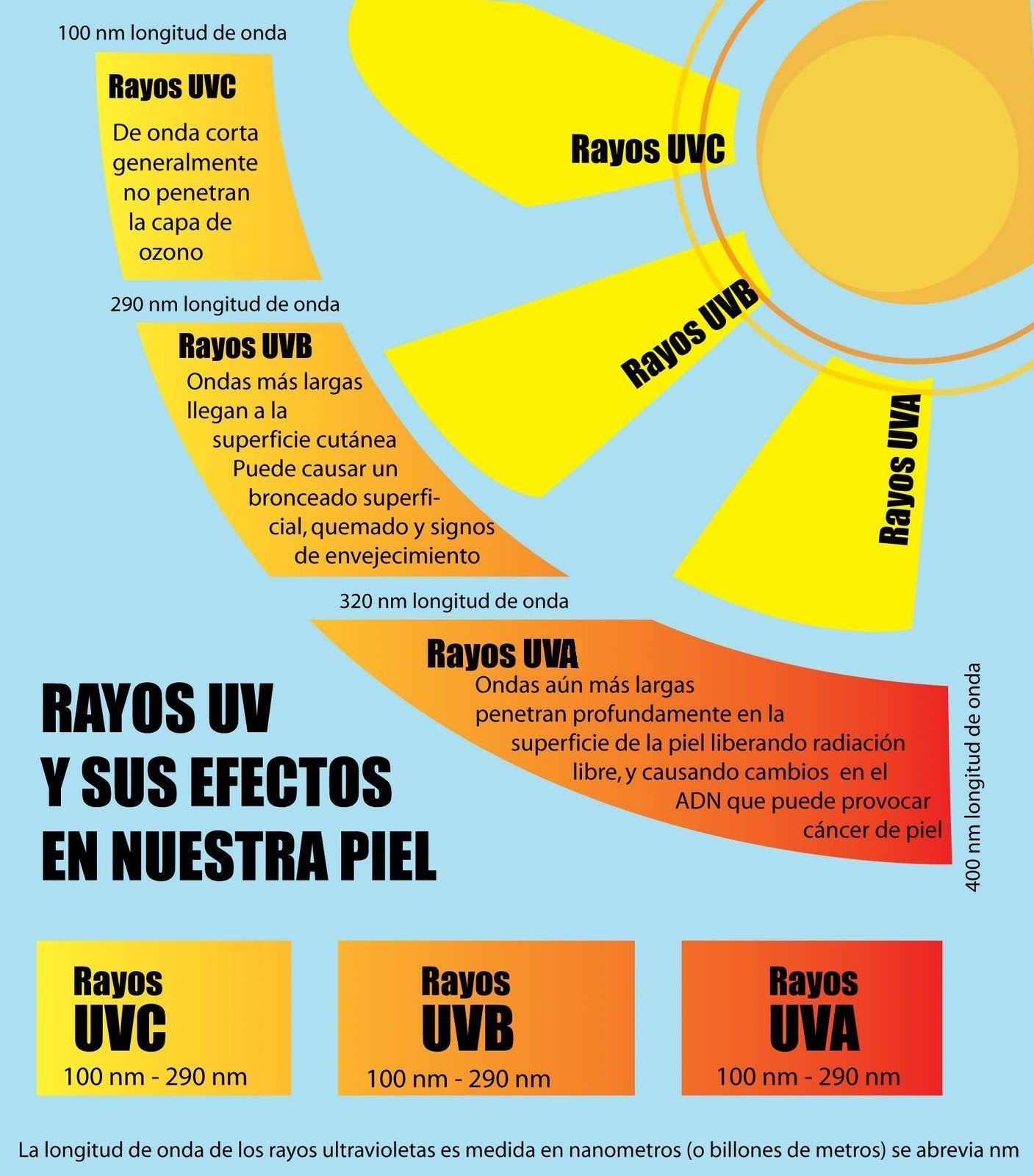 Rayos solares y la piel