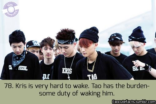 EXO FACT ♡ #KPOP - 78