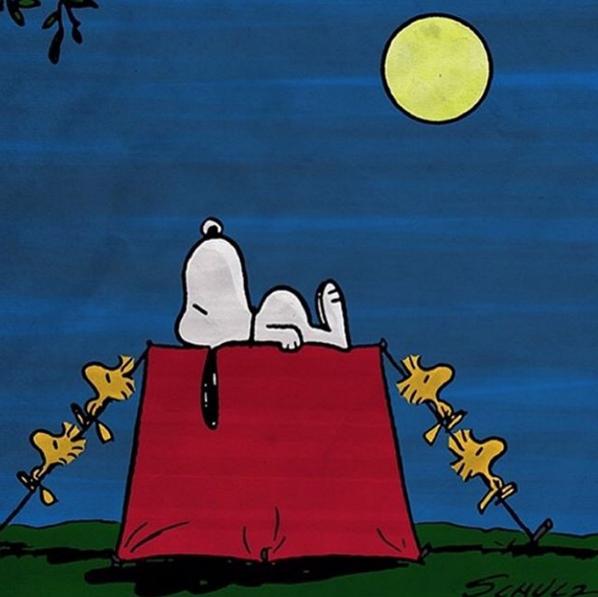 693e24d46a Camping.