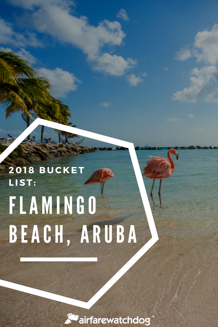 2018 Bucket List Flamingo Beach Aruba 2018