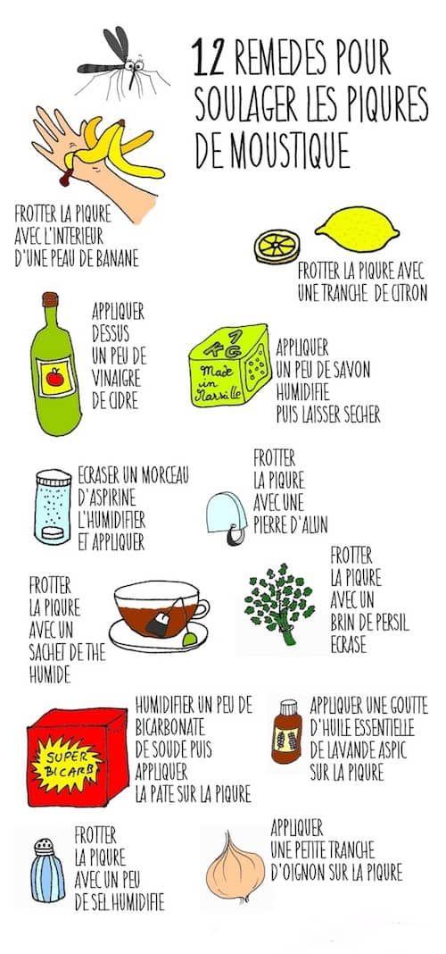 12 Remedes Super Efficaces Pour Soulager Une Piqure De Moustique
