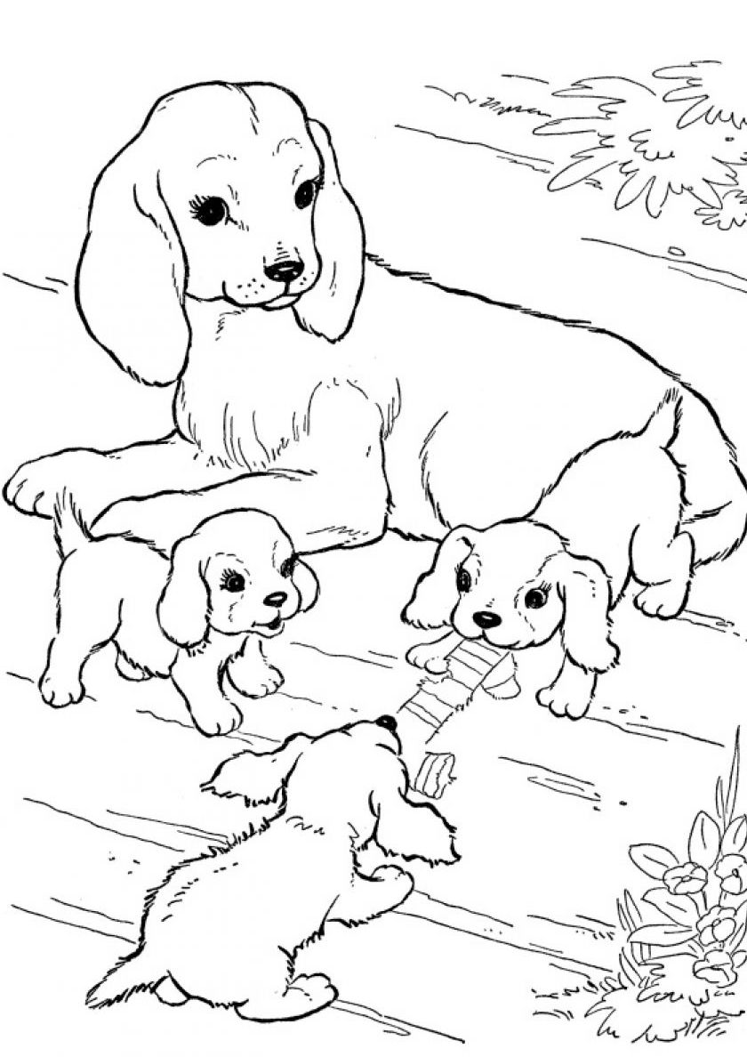 - A Dog's Family Coloring Page - Dogs And Puppies In 2020 Puppy