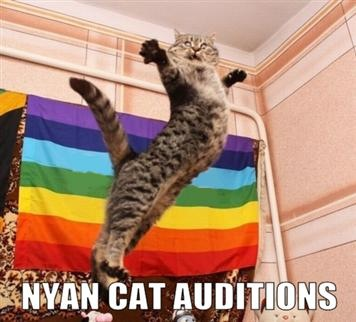 Nyan Cat Auditions...