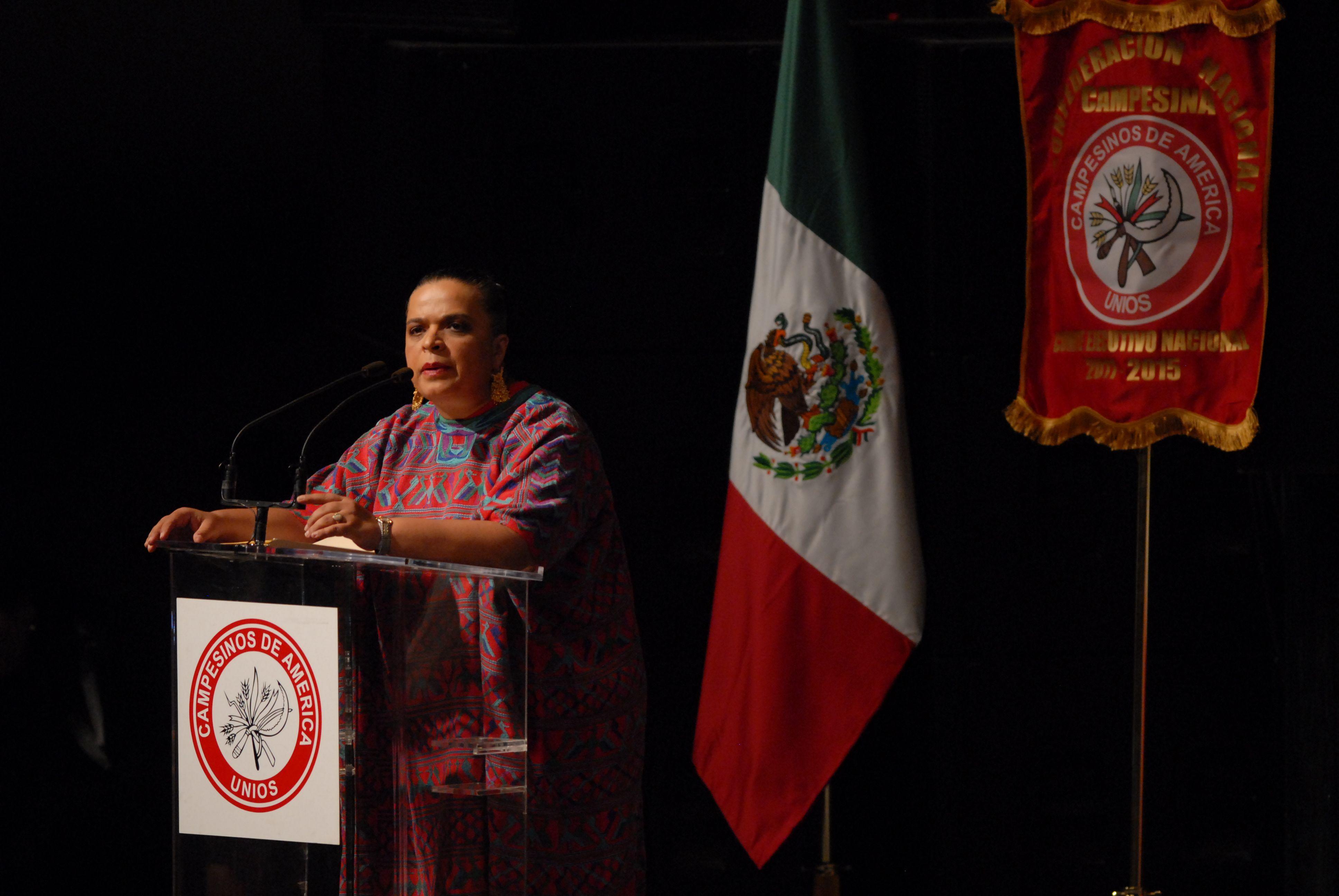Al evento, que se realizó en el Auditorio Nacional, asistieron la presidenta nacional del PRI, Beatriz Paredes Rangel; el líder del senado, Manlio Fabio Beltrones, entre otros.