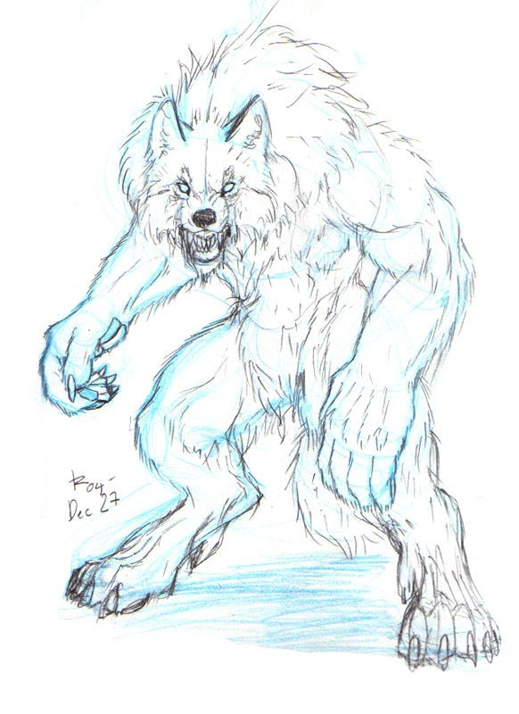 How To Draw A Werewolf Face Head Eyes Step 6 Werewolf Drawing
