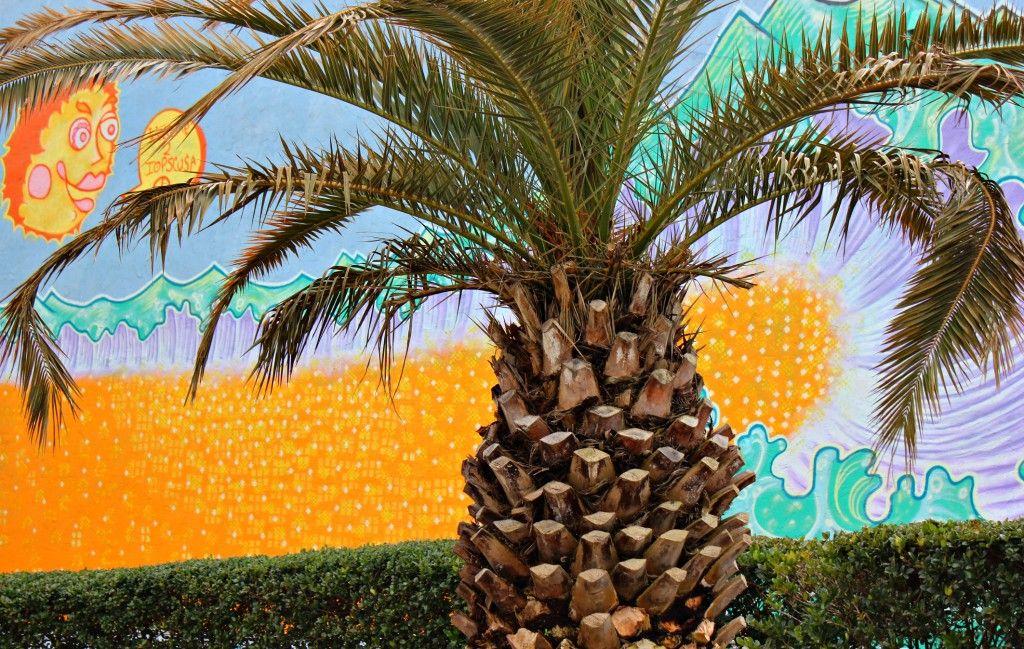 Visiting Sullivan's Island & Isle of Palms – Simply Taralynn
