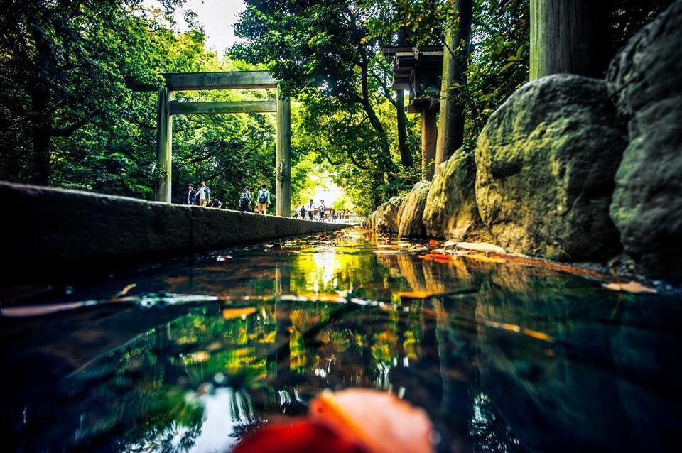 熱田神宮 Photo by Atsuhiro Okada