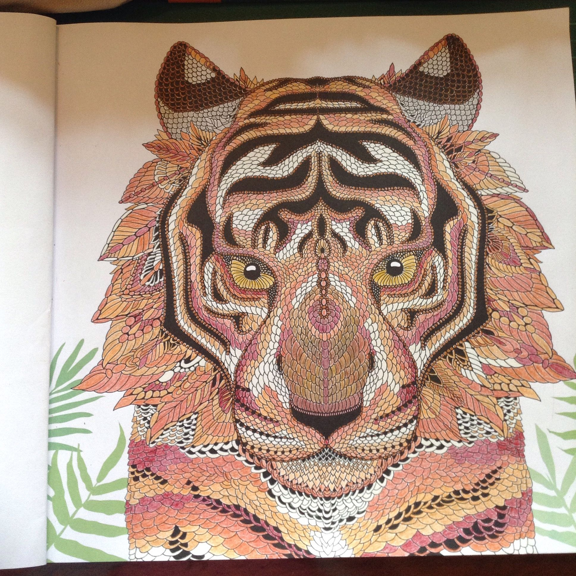 The Tiger From The Menagerie Colouring Book Animal Coloring Books Coloring Books Mindfulness Colouring