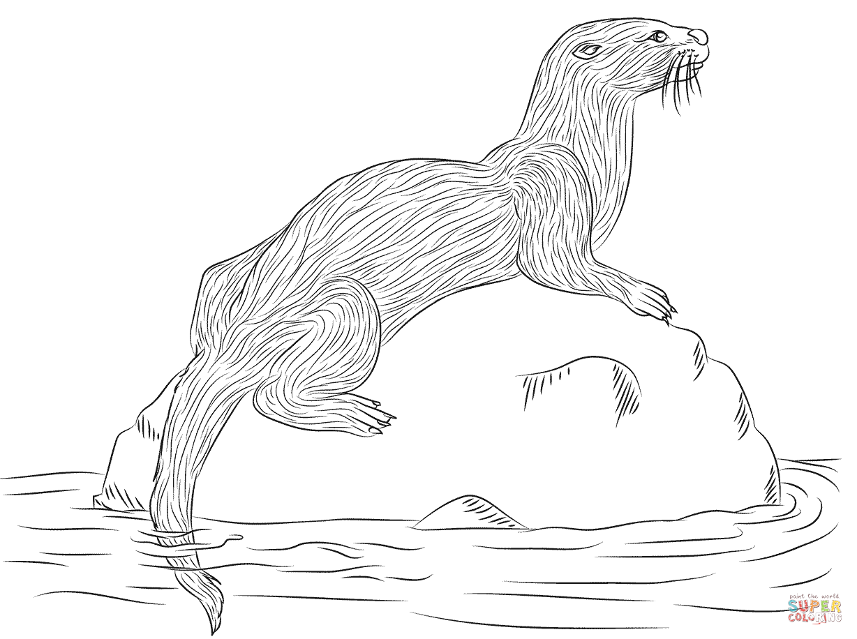 sea otter coloring pages Google Search sea otters Pinterest