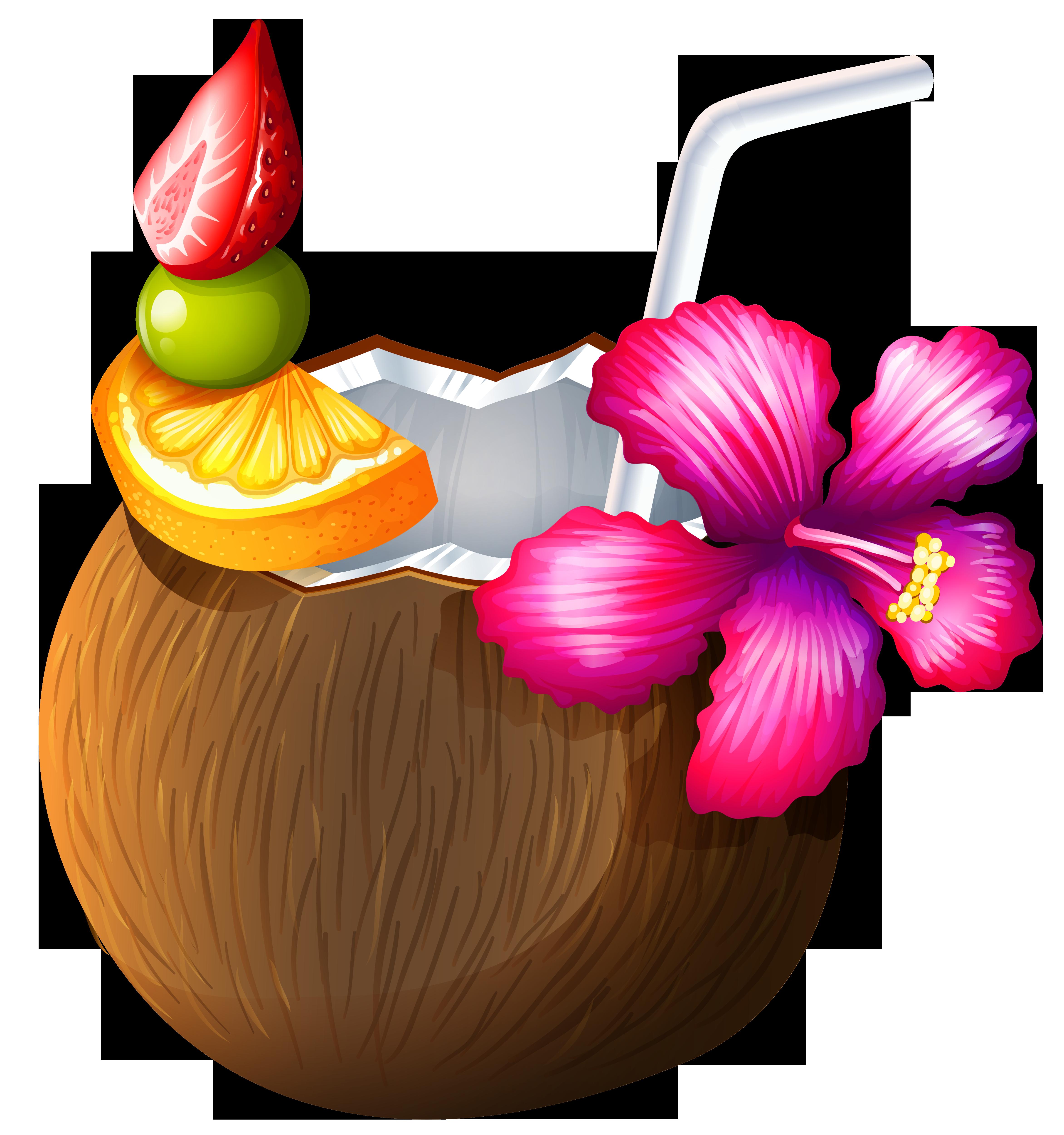 Coconut Drink Clip Art Summer Cicekli Desenler Cicek Meyve