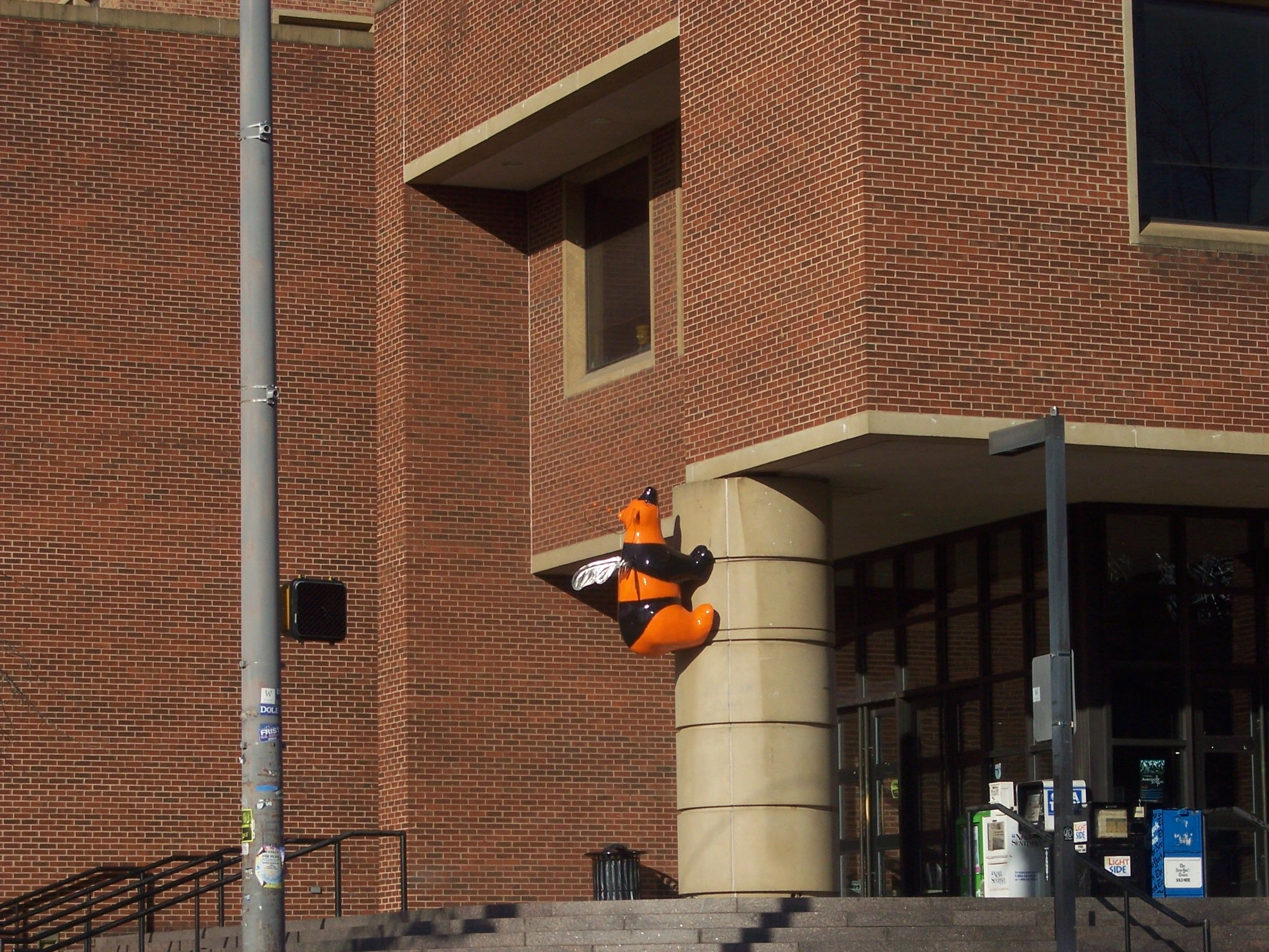The Bumblebear on Hodges Library. Univ. of Tennessee (Knoxville)