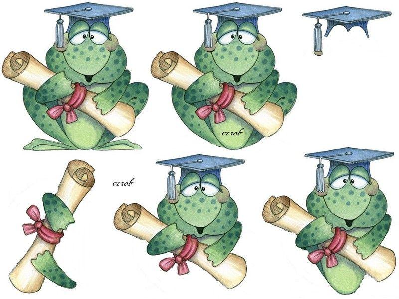 grenouille diplômée