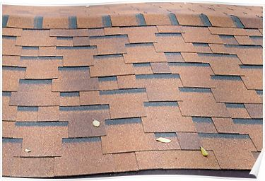 Best View From The Roof Shingles Closeup Brown Poster 640 x 480