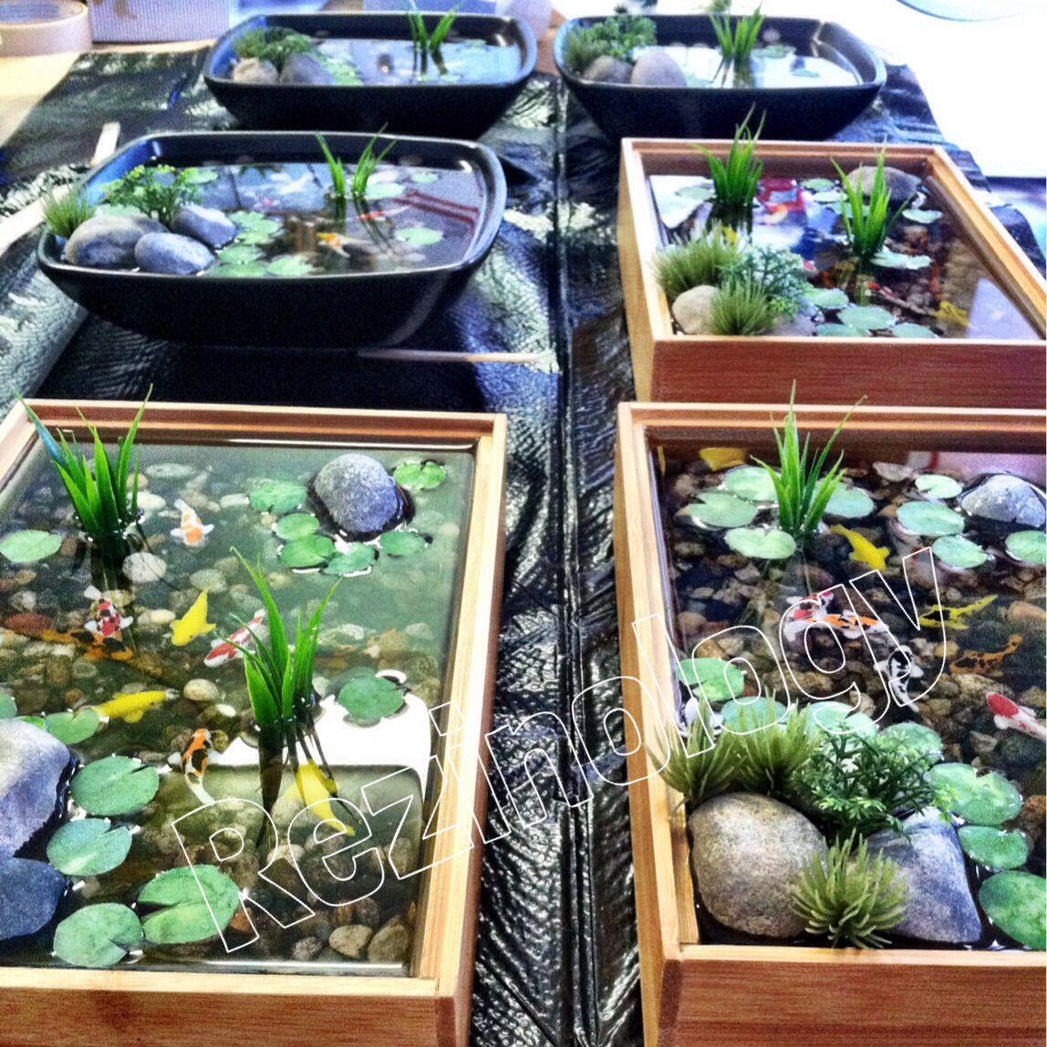 Miniature koi ponds   Miniature koi pond, Aquaponics ...