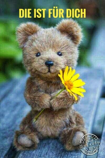 Wuensche Dir Einen Schoenen Tag Spruch Bear Teddy Bear Und