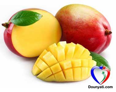 دنيتي فوائد أوراق المانجو الصحية Mango Health Food Healthy Snacks For Kids