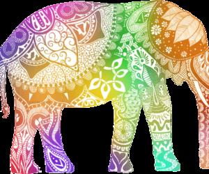 namaste elefante - Buscar con Google