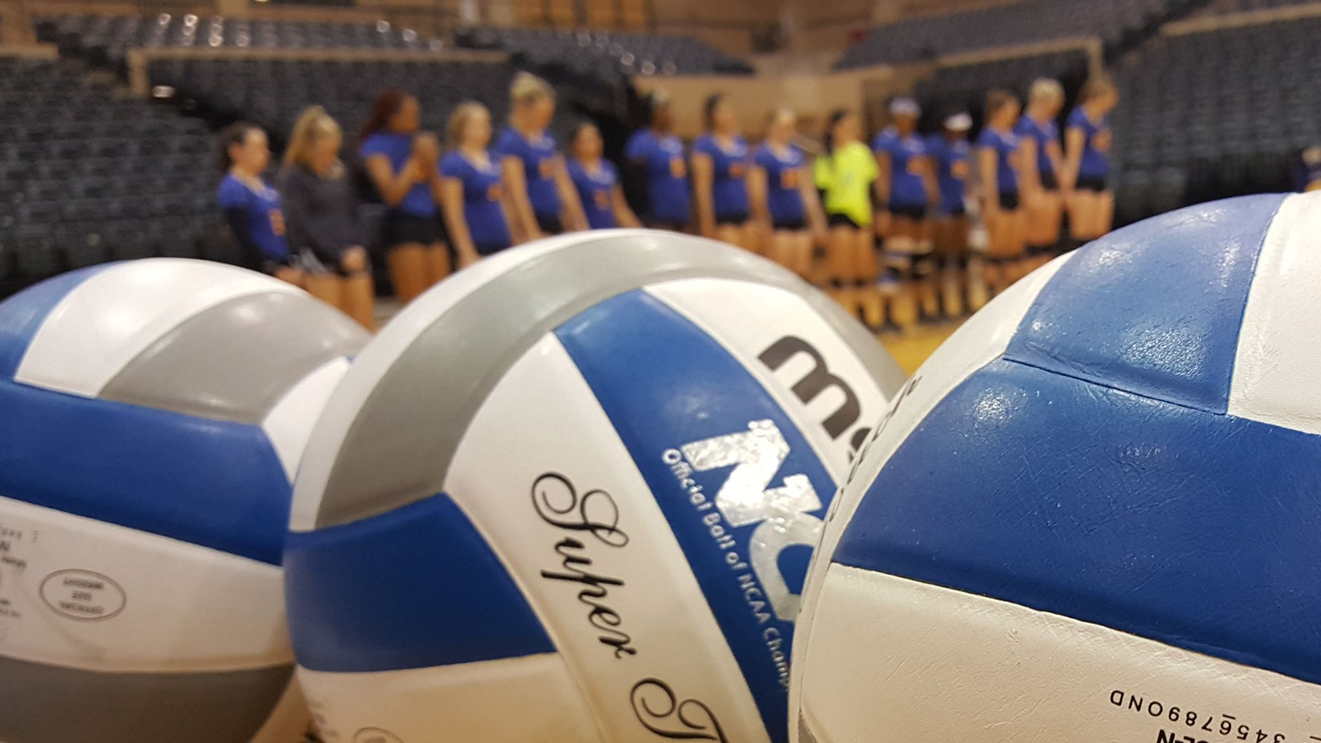 Rattler Volleyball Recognized By Avca Volleyball Soccer Ball Soccer