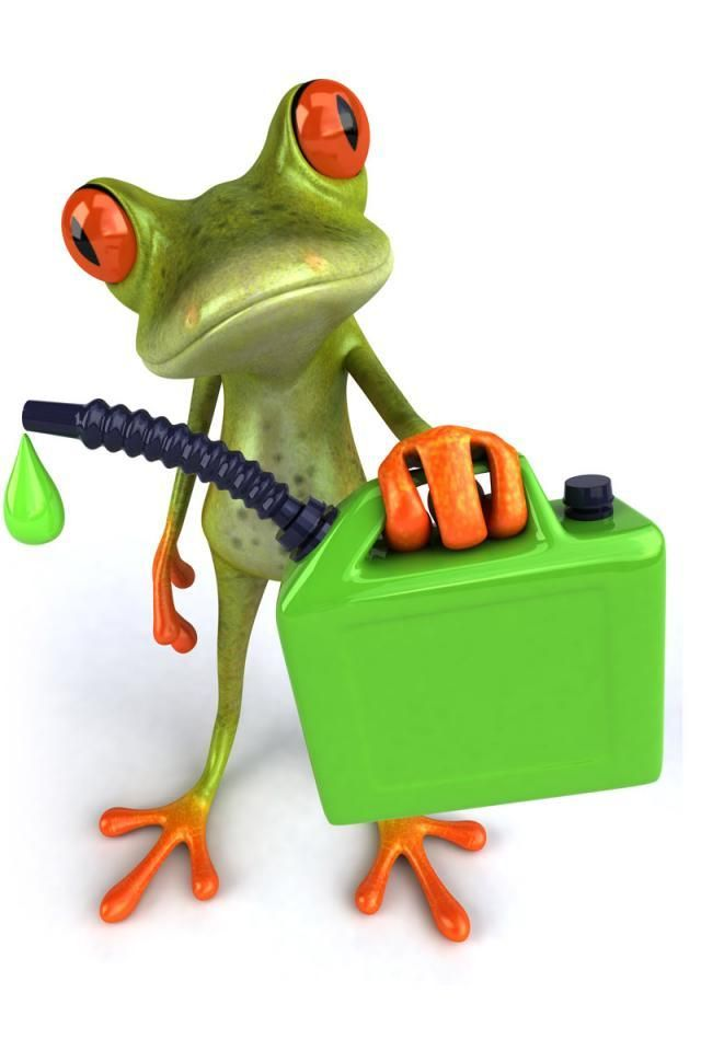 Frog Images Google Search Characters Frog Art Frog