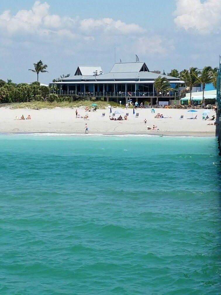 Fins At Sharky S View From The Pier Venice Beach Fl Check