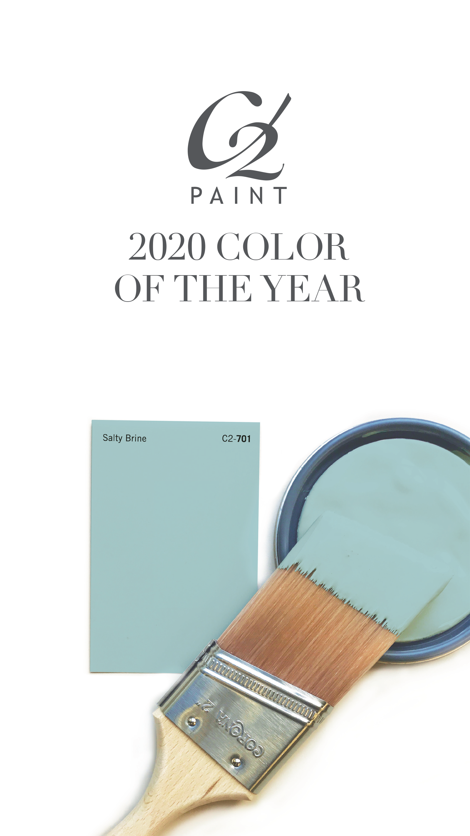 C2 Paint 2020 Color Of The Year Paint Colors For Home Paint Trends Trending Paint Colors