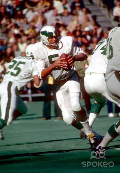 cd76edfdbd6 Philadelphia Eagles quarterback #5 Roman Gabriel in action during the 1973  season.