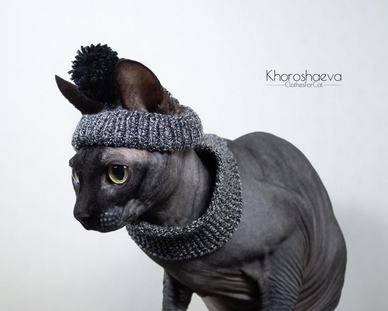 Cat Seamless Hat Beanie With Pom Pom And Snood Knitting Etsy Snood Knitting Pattern Cat Accessories Cat Beanie