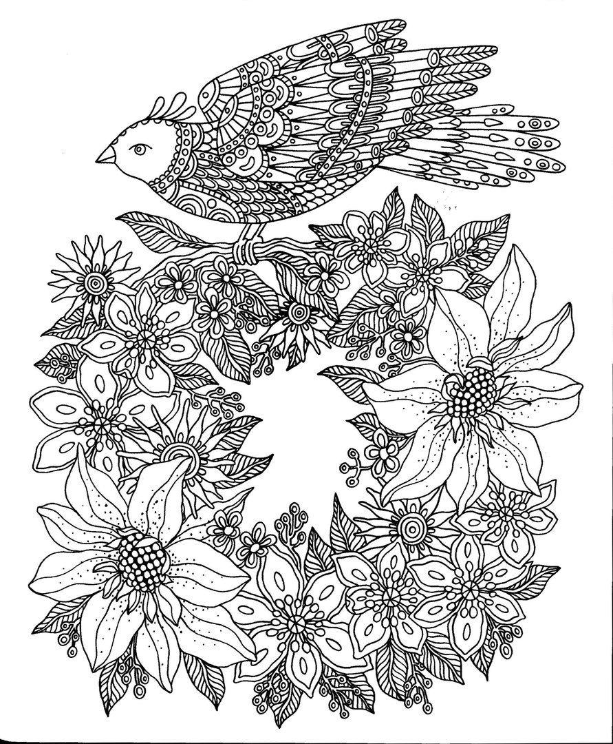 Pin de Morgan Armstrong en Coloring pages | Pinterest | Pájaro y ...