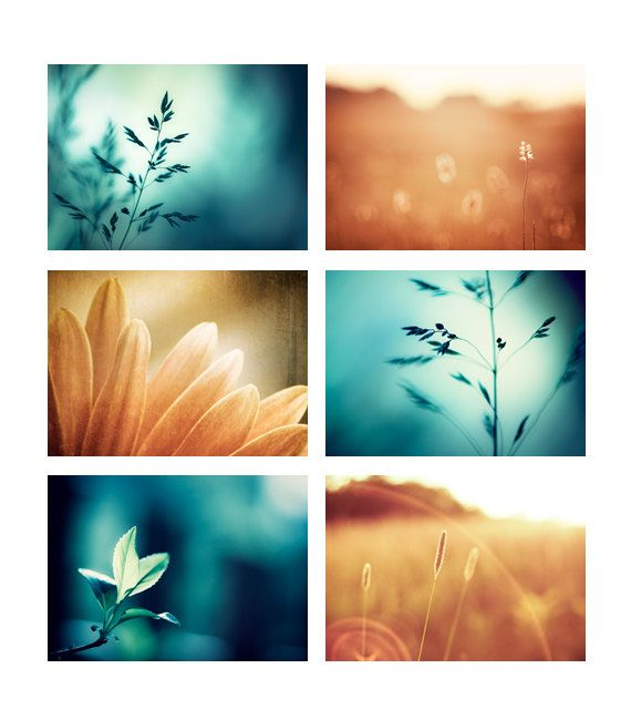 Teal And Brown Wall Art teal orange photo set - six photographs - aqua blue turquoise