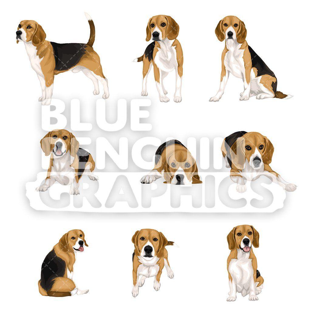 Beagle Dog Bundle Set Vector Clipart In 2020 Beagle Dog Dog