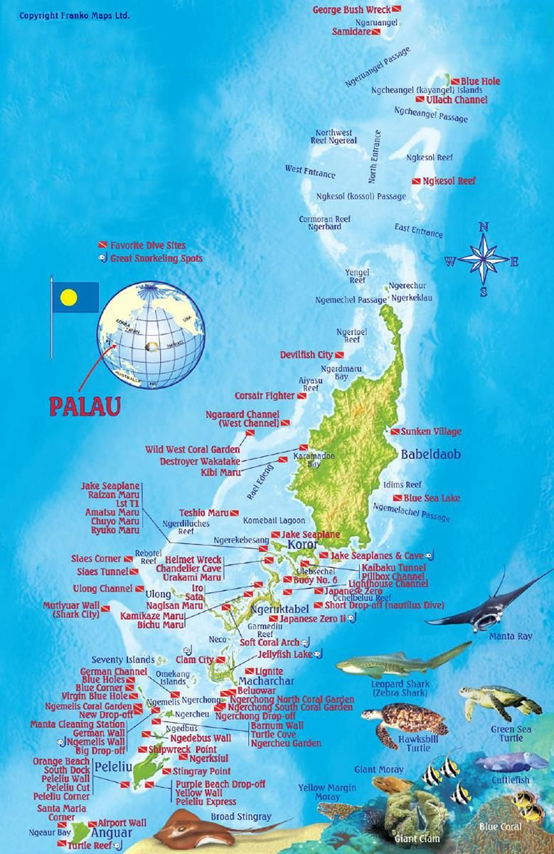 Wallpapers Beaches On Guam Dive Sites Map 421x650 60518 Beaches On Guam Palau Islands Palau Federated States Of Micronesia