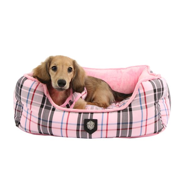 Fresh Cozy Dog Bed Inspiration