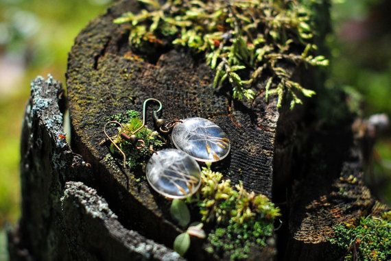 Resin earrings with real dandelion seeds by silentmorningforest