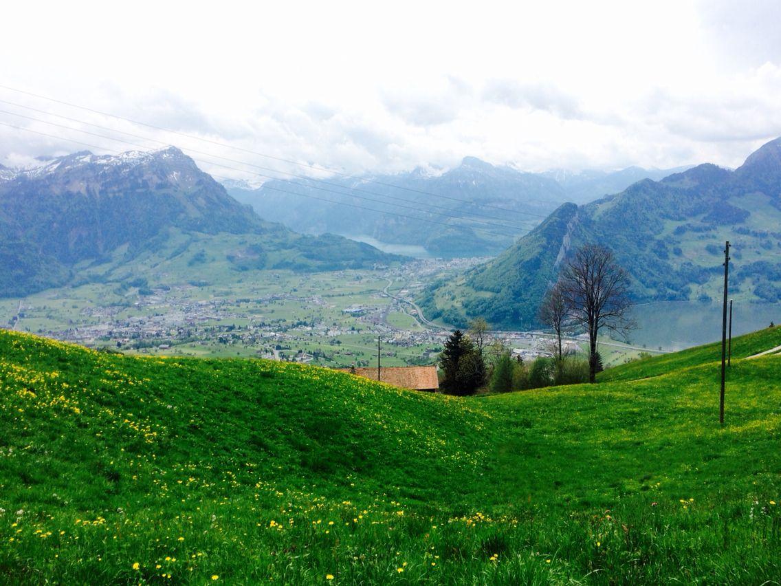 Mostelberg, Sattel, Schweiz.