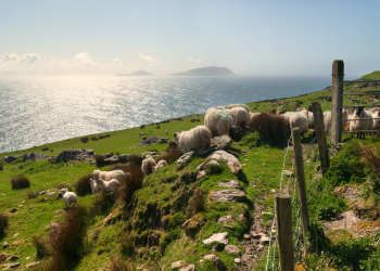 Best Ireland Vacation Packages Best Place In The World For - Ireland vacation packages 2015