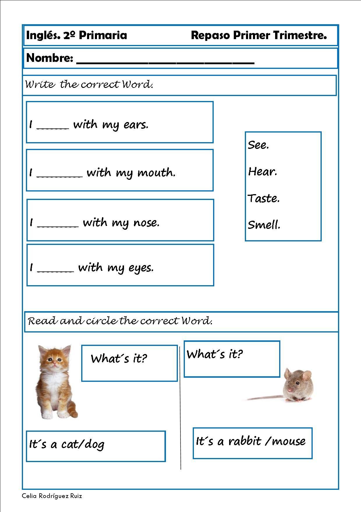 Ejercicios de inglés para segundo de primaria | Ejercicios ...