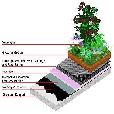 Jardin Huerto Exteriores Casa Vegetariana Facebook Green Roof System Green Roof Living Roofs